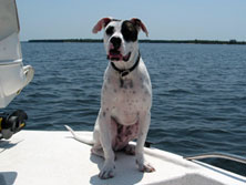 Dog Friendly - All anglers are welcome aboard with Capt. George